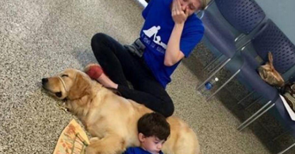 Vede il figlio sdraiato sul cane, giovane mamma si commuove fino alle lacrime