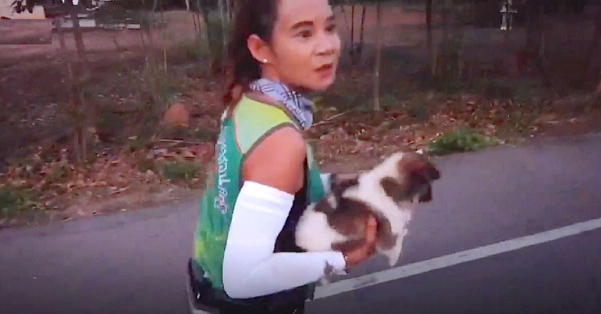Eroica maratoneta si  trova un cucciolone tra i piedi, decide di compiere un'azione straordinaria per salvargli la vita