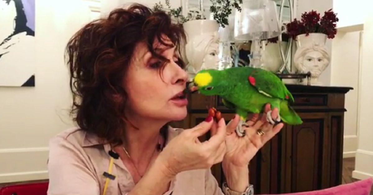Alda D'Eusanio ci ricasca e pubblica un video mentre il suo pappagallo Giorgio prende il cibo dalla sua bocca.