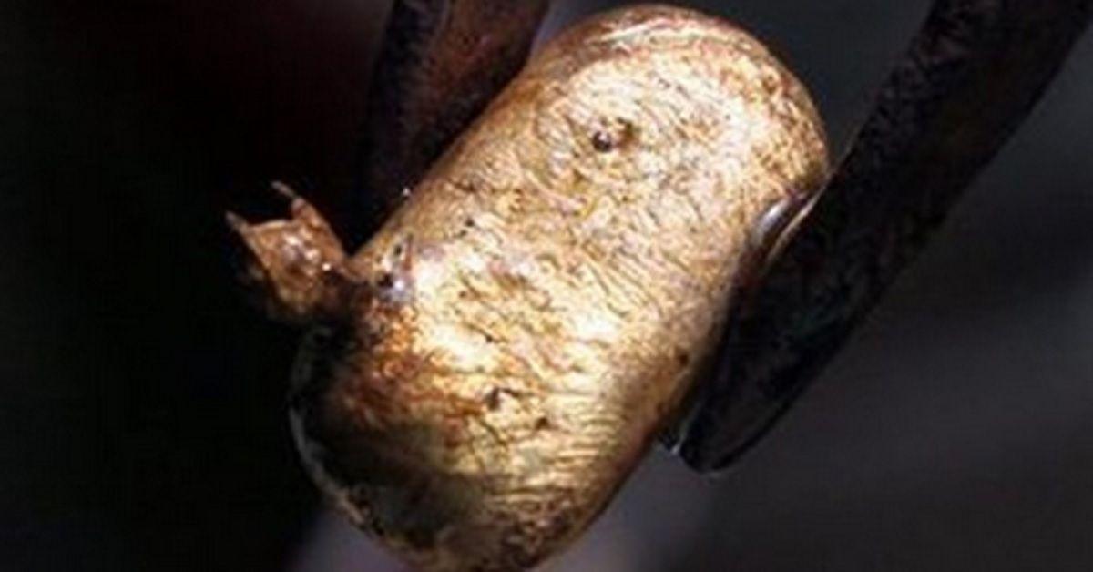 Trova una pepita d'oro del valore di 60.000 euro con un metal detector