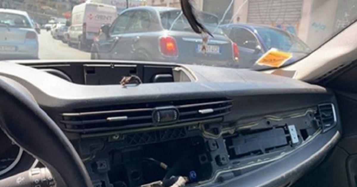Napoli, rubati stereo e navigatore dall'auto di un nuotatore delle Universiadi