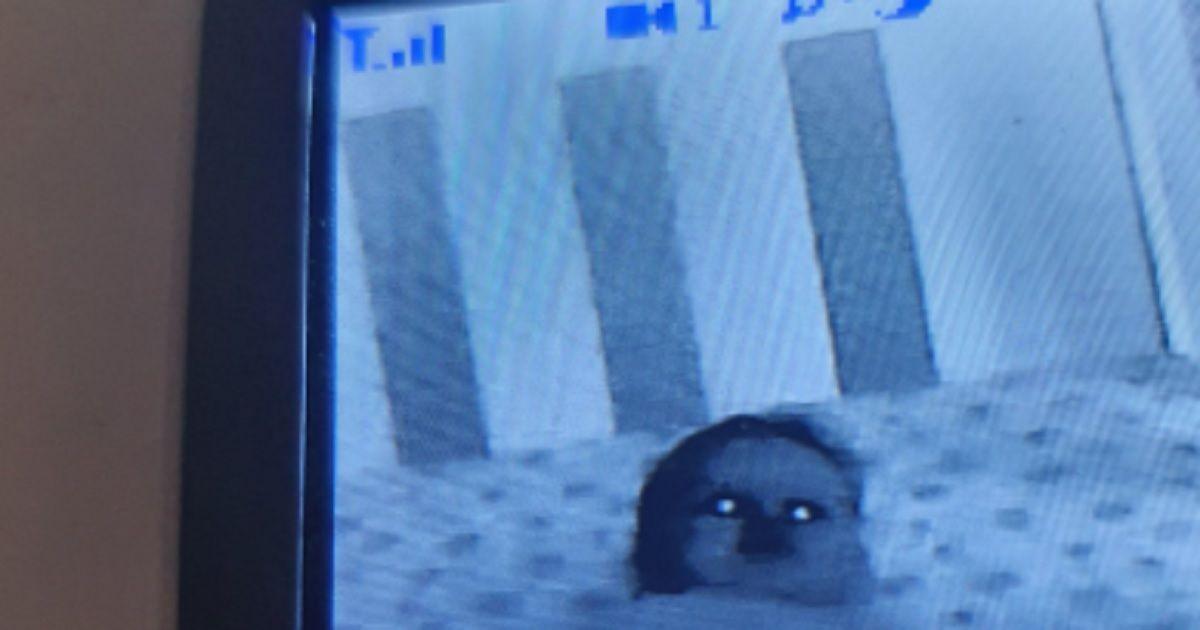Sembra uno zombie, ma è solo la foto di un bambino vista dal baby monitor. E' partita la challenge sui social guarda le foto da paura