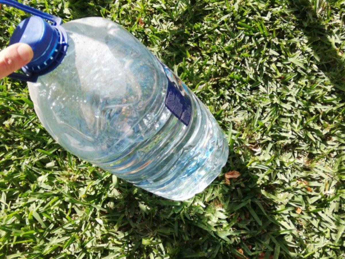 Bagnare Piante Con Bottiglie scopri la tecnica del gocciolamento solare per irrigare
