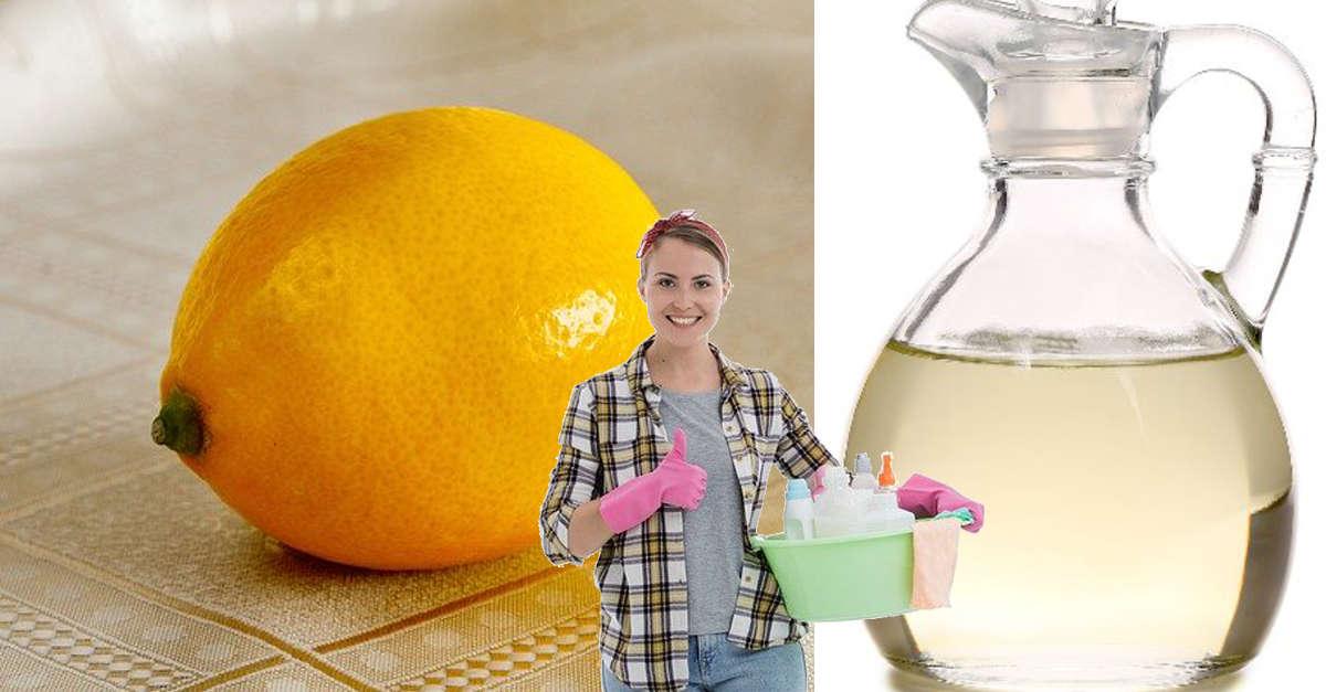 Come fare aceto con odore di arancia e cannella o limone e menta per pulire casa e farle avere un odore fantastico!