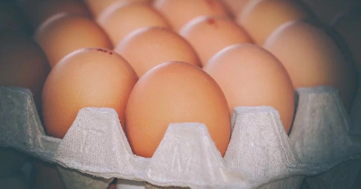 Trucchi per sapere se un uovo è buono o no