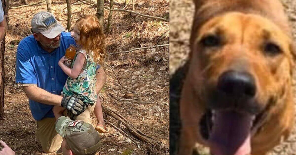 Bambina di 4 anni si perde nel bosco. Ritrovata dopo 3 giorni grazie al cane che l'ha riscaldata e si è fatto sentire dai soccorritori – LE FOTO