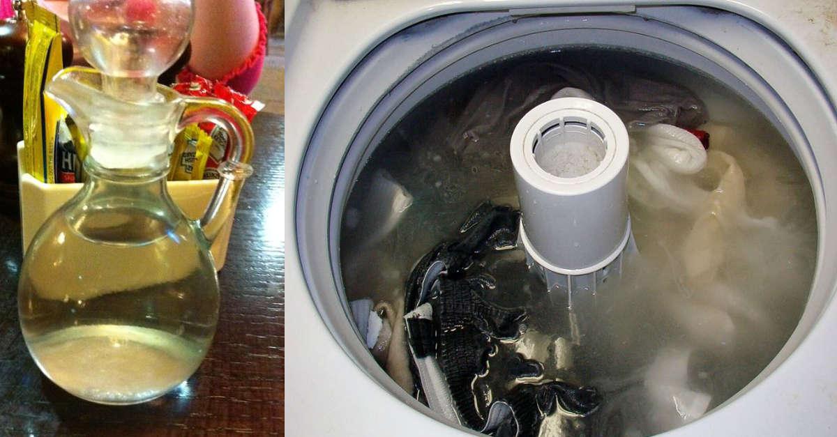 Metti l'aceto bianco in lavatrice per avere un bucato soffice e profumato: ecco come fare