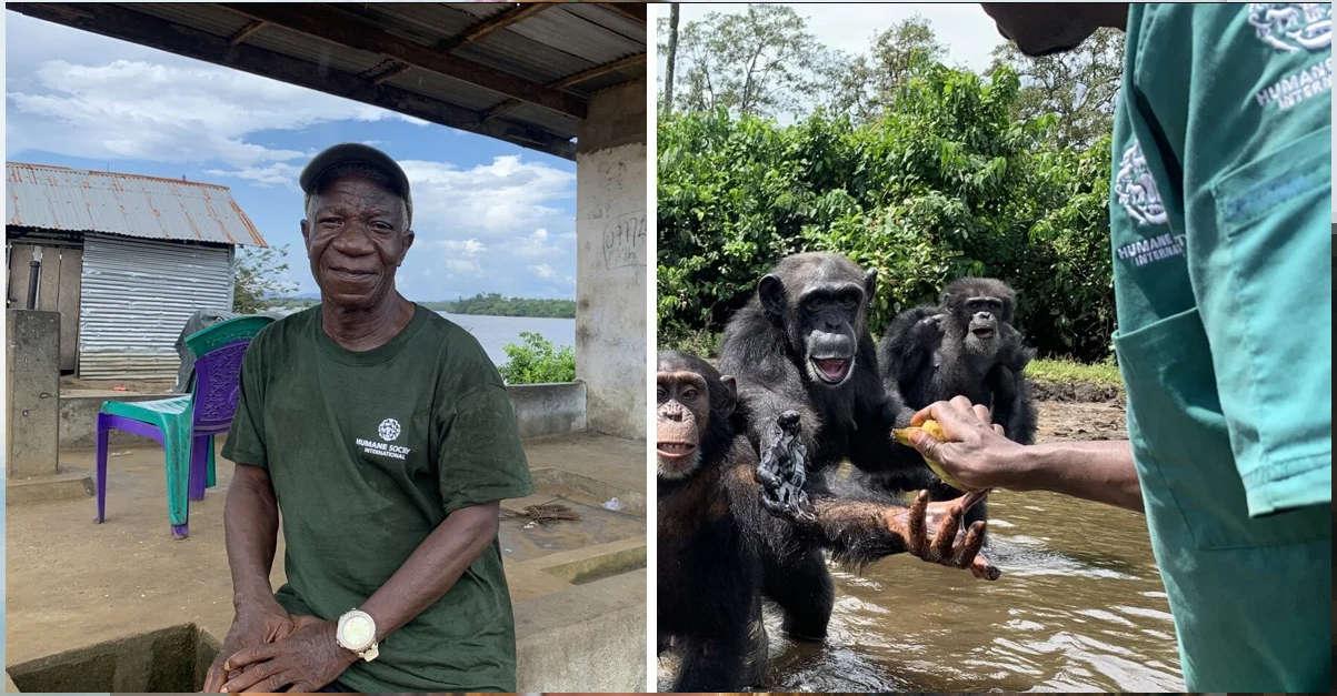 Hanno abbandonato 60 scimmie su un'isola dopo averle inoculate con l'epatite. Ma il loro custode è rimasto con loro