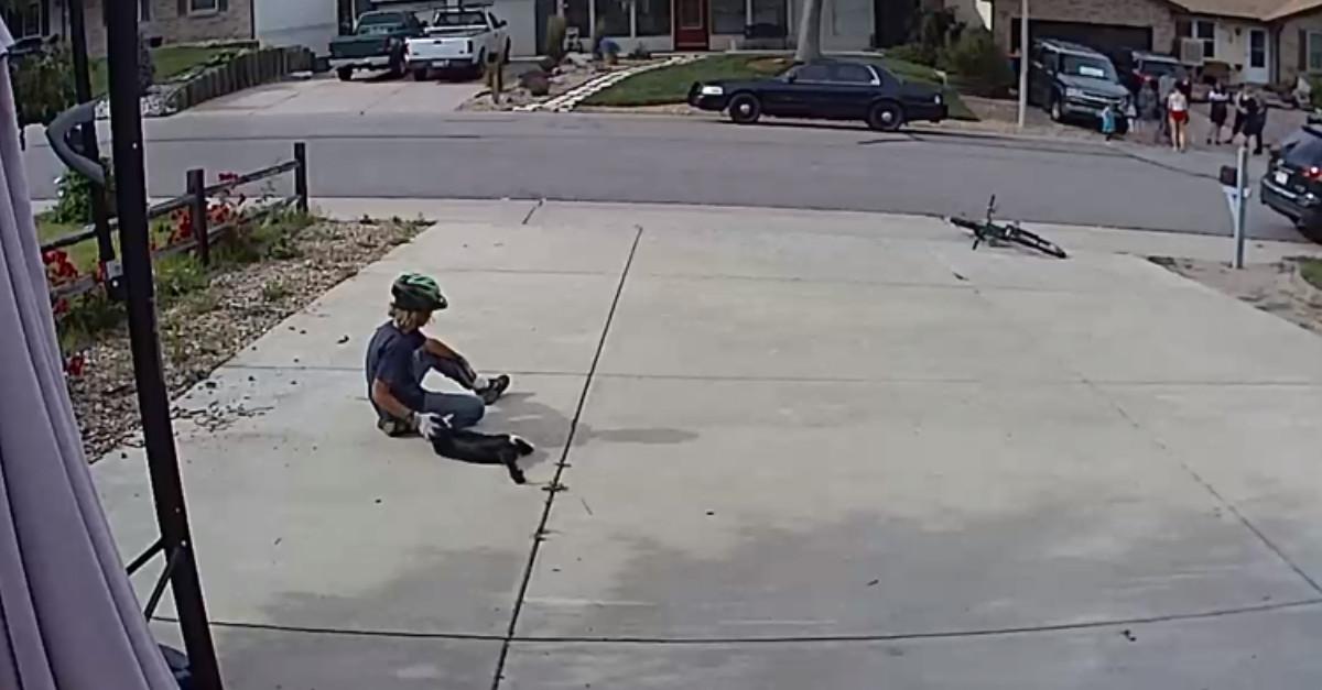 Il figlio del vicino adora il gatto con un occhio solo dei suoi vicini, l'amore è reciproco e lo hanno registrato