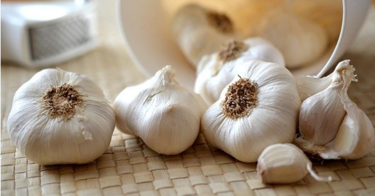 Quali sono i benefici dell'aglio?