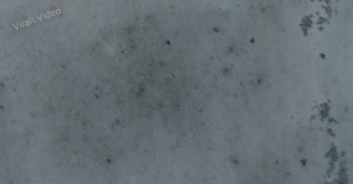 6 trucchetti per rimuovere le macchie di umidità dai muri di casa