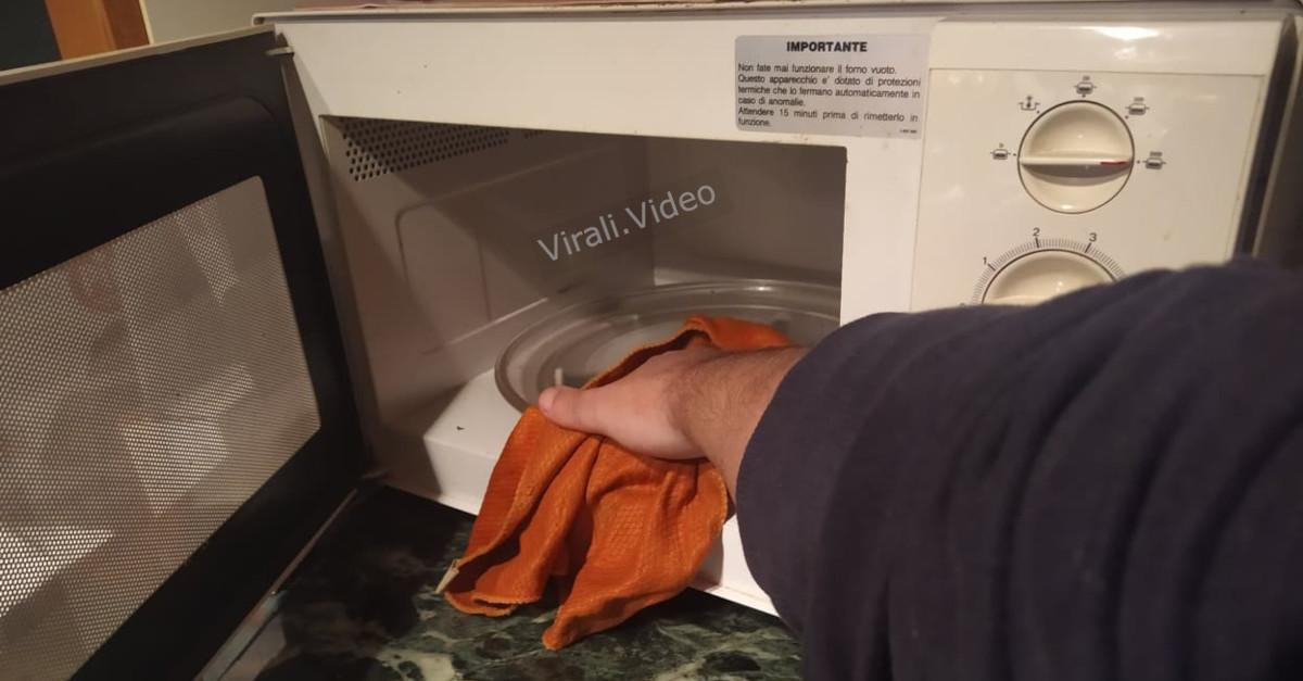4 trucchi per pulire e disinfettare il forno a microonde: semplici, economici e veloci!