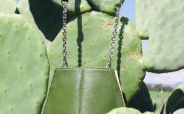 pelle creata tramite i cactus