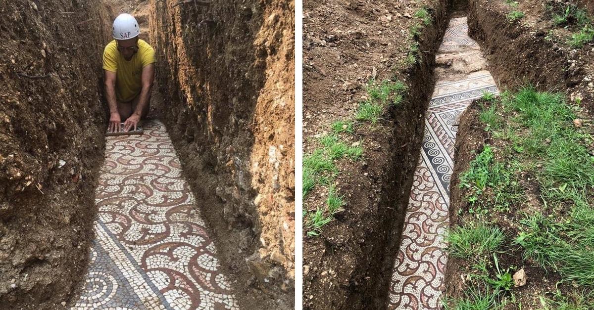 Italia: Pochi mesi fa un antico mosaico romano in ottime condizioni è stato scoperto sotto un vigneto