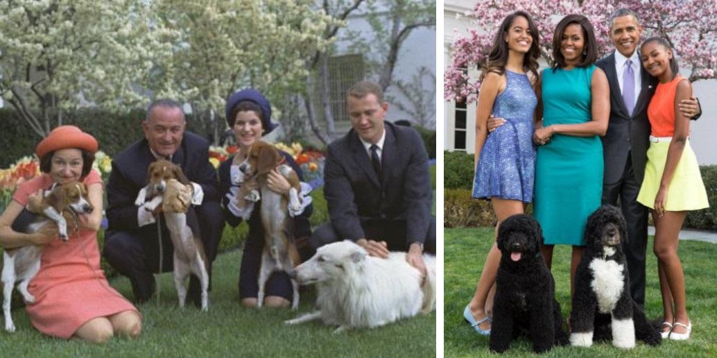 17 foto di tutti i cani dei Presidenti Americani. I cani più famosi della Casa Bianca