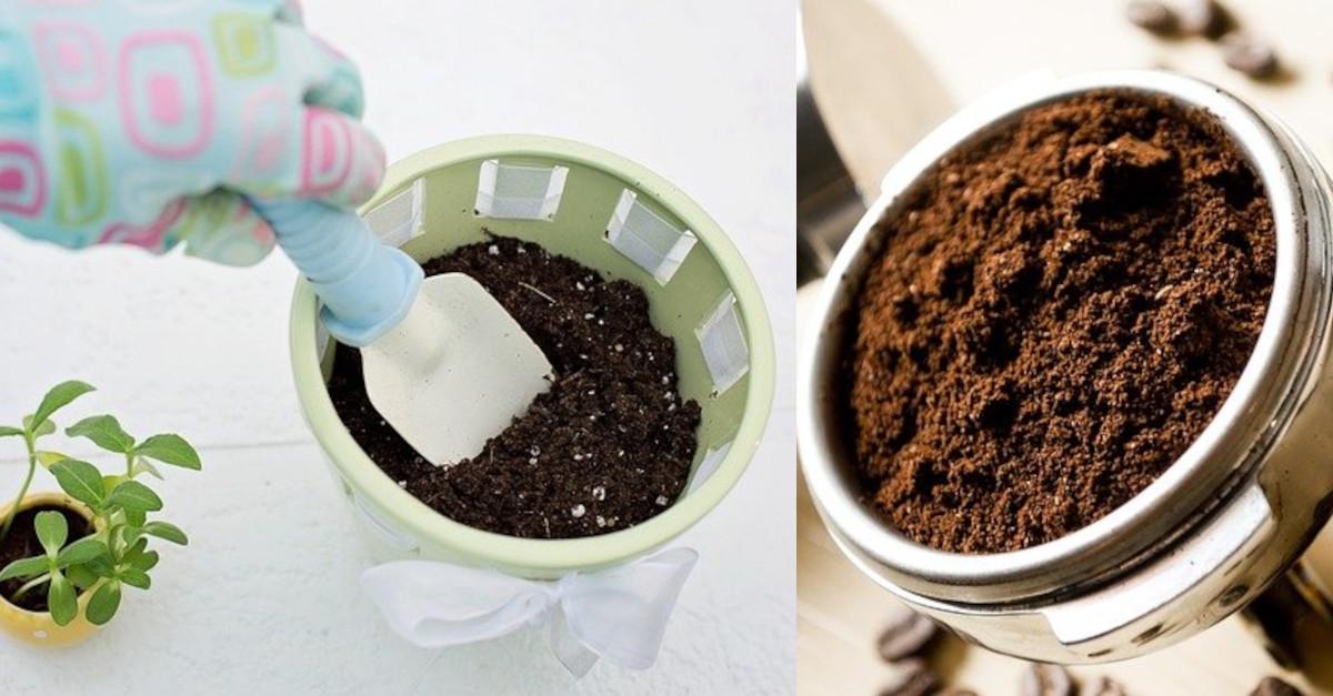 9 modi per utilizzare i fondi di caffè in casa