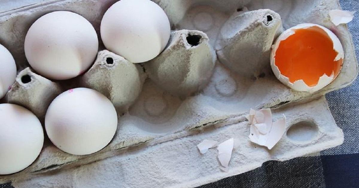 Tutte le informazioni che dovresti conoscere prima di comprare le uova
