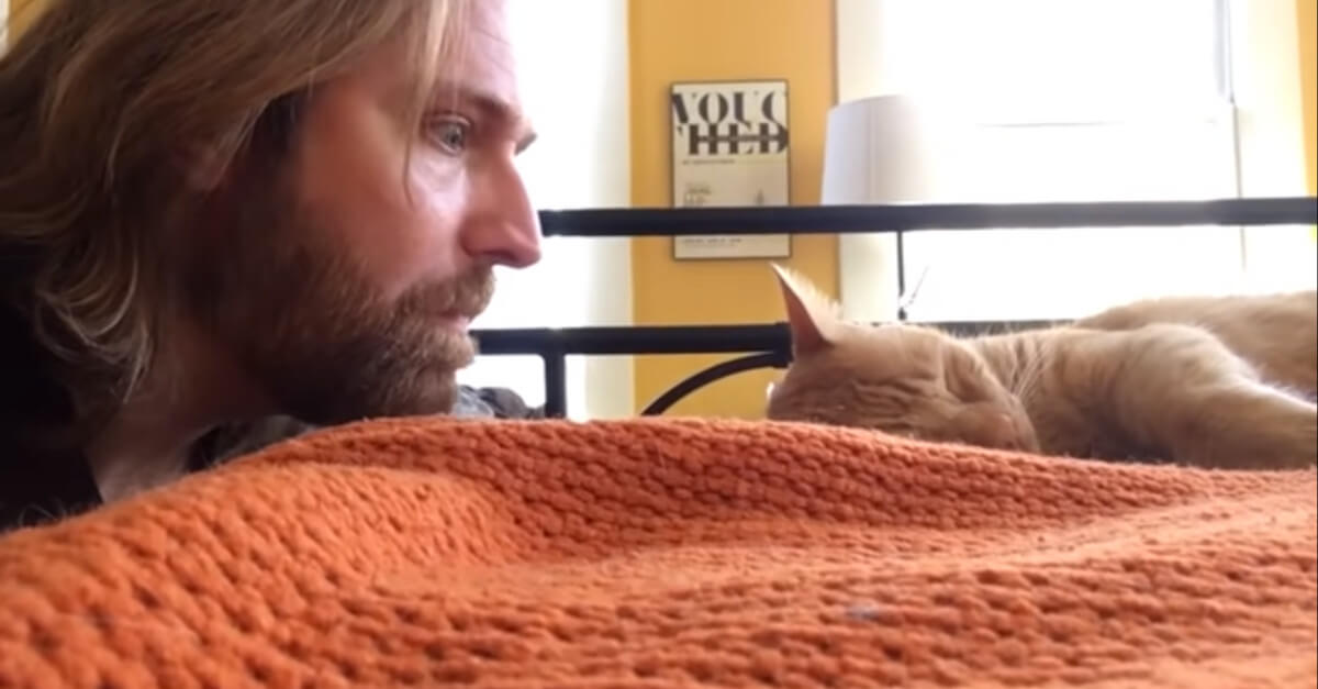 Il divertente video di un uomo che si vendica del suo gatto che lo sveglia ogni notte con i suoi miagolii