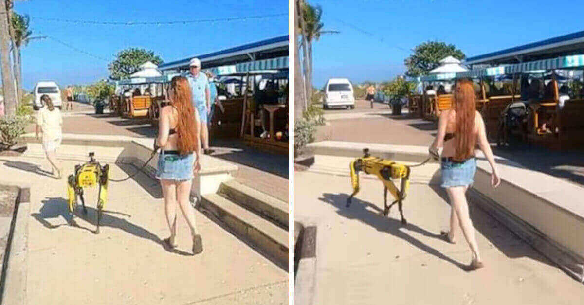 Riprendono una donna che cammina con il suo cane robot Boston Dynamics; il futuro è arrivato