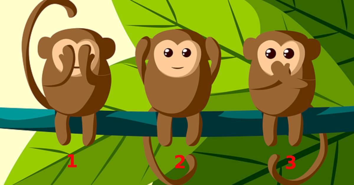 Test: Scegli la scimmia che più ti piace e scoprirai i segreti della tua personalità