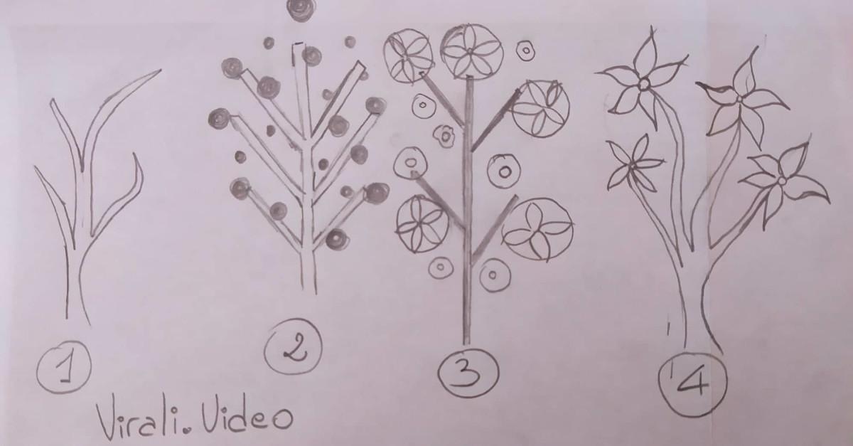 TEST: Scopri quale emozione prevale nella tua vita con il test dell'albero