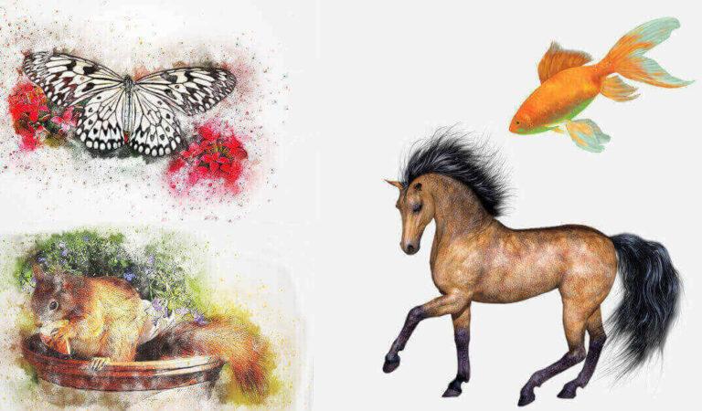 TEST: Quale animale scegli? La risposta ti svela cosa ti disturba di più