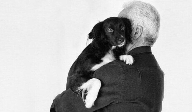 Uno studio ha scoperto che perdere un cane può essere difficile quanto perdere una persona amata