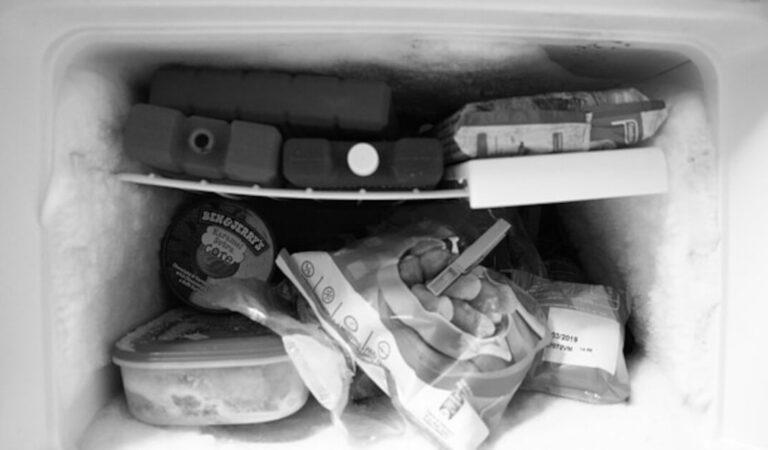Quanto dura il cibo crudo nel congelatore?