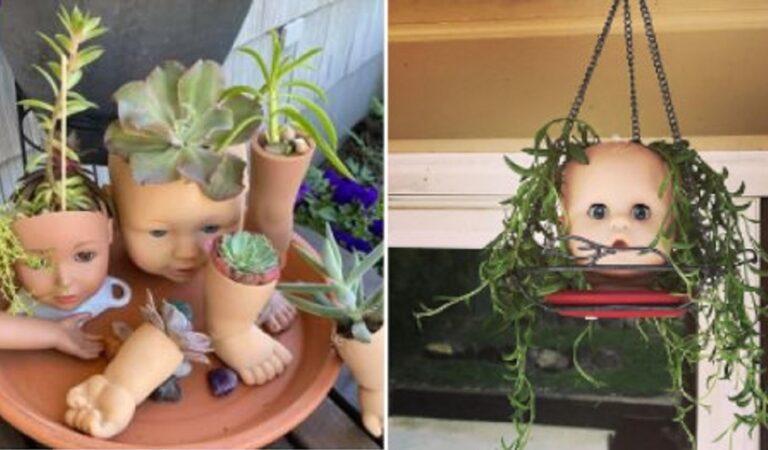 Il trend di trasformare la testa delle bambole in fioriere: 10 foto condivise su Instagram