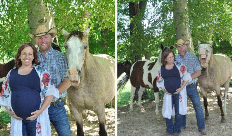 """Cavallo """"amante dell'attenzione"""" fa il photobomber nella foto di maternità e chiaramente, sa quanto è carino"""