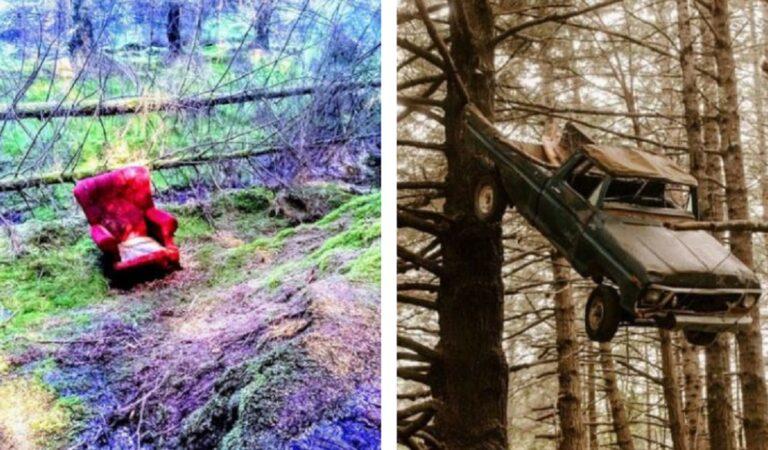 18 ritrovamenti inaspettati e inquietanti condivisi sui social dopo una passeggiata nel bosco