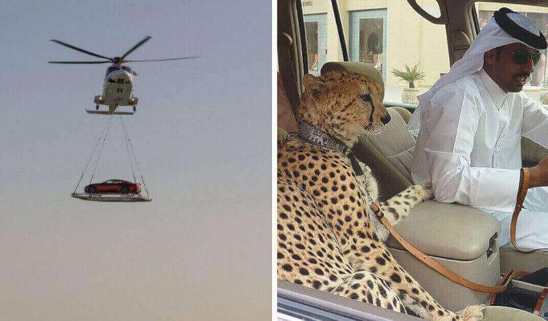 16 cose incredibili possibili solo a Dubai