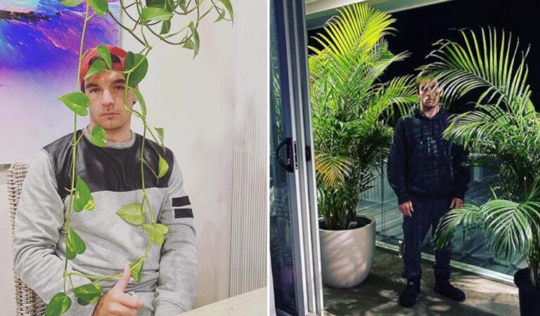 14 mariti disperati che mostrano cosa vuol dire vivere con una moglie ossessionata dalle piante.