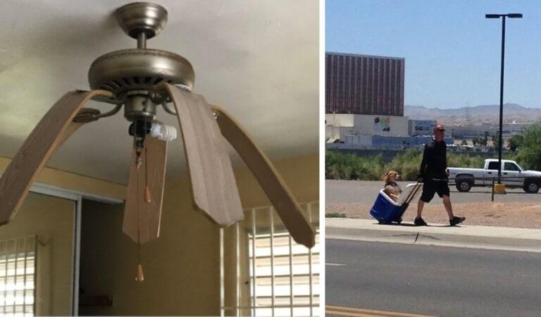 19  persone hanno condiviso sui social i terribili risultati della rovente ondata di caldo estivo