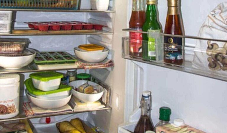 I passaggi da seguire per conservare gli avanzi di cibo in frigorifero e in freezer