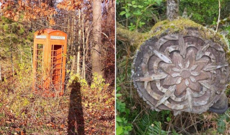 15 volte che le persone hanno trovato cose piuttosto curiose e spaventose nella foresta
